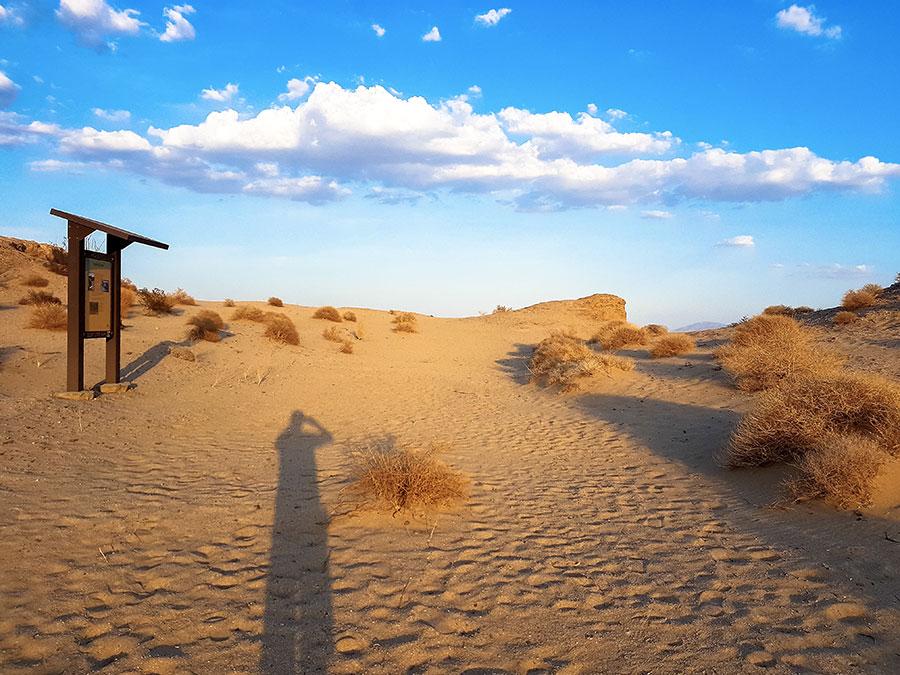 dunes-anza-borrego